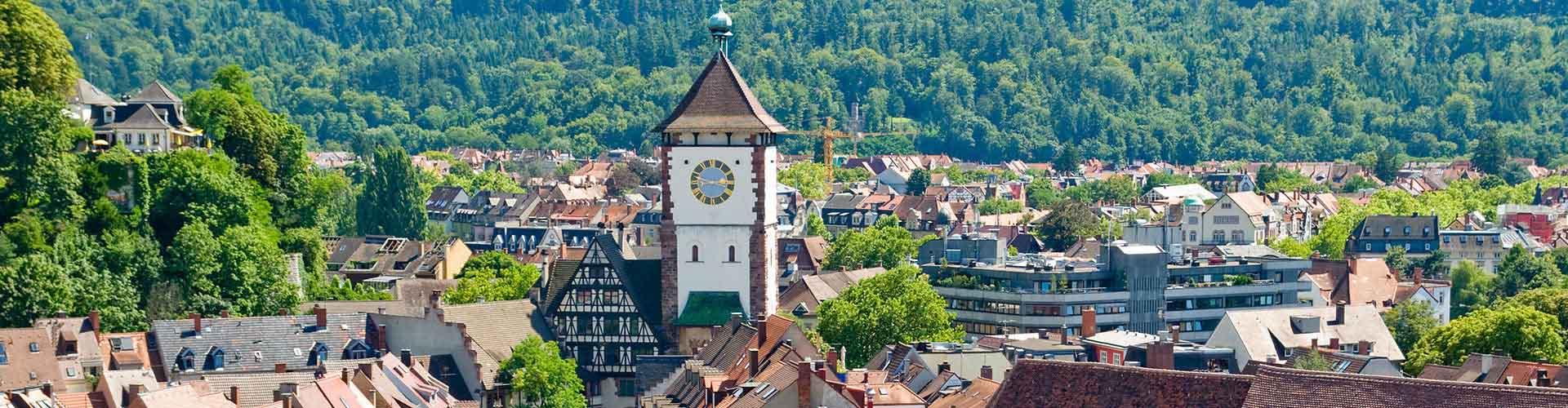 Friburgo - Albergues en Friburgo. Mapas de Friburgo, Fotos y Comentarios para cada Albergue en Friburgo.
